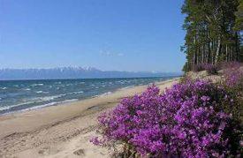 Развитие экологического туризма. Заповедные зоны России